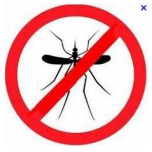 trampa mosquitos